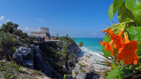Tulum and Cenote Tour from Cancun