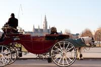 Romantic Vienna Combo: Vienna Card, Horse and Carriage Tour, Belvedere Palace and Candlelight Dinner
