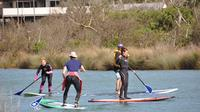 Introductory Stand Up Paddleboard Experience from Anglesea image 1