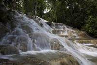 Falmouth Shore Excursion: Dunn's River Falls and Ocho Rios Shopping Tour