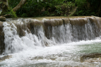 Ocho Rios Shore Excursion: Dunn's River Falls and Horseback Riding Tour