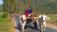 Nha Trang Countryside Club with Horse Carriage Full-Day Tour