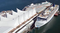 Cruiseship Pick up with 4 Hour Private Tour