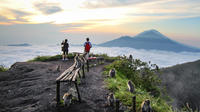 Private Tour: Bali Active Volcano Sunrise Trekking