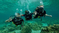1-Day Discover Diving in Ko Lanta