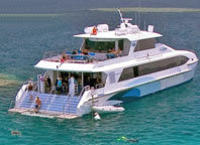 Outer Great Barrier Reef Dive and Snorkel Cruise from Port Douglas
