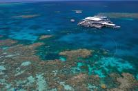 Outer Great Barrier Reef Snorkel Cruise from Port Douglas