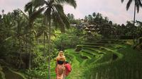 Private Tour: Balinese Culture and Scenery