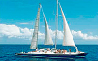 Bay of Sosua Catamaran Cruise and Snorkeling