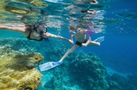 Punta Cana Snorkel and Caribbean Dance Cruise