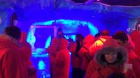 Argentinian Ice Bar, Wine and Dinner Experience image 1