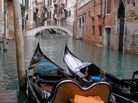 Venice Departure Transfer: Central Venice to Cruise Port