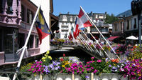 Chamonix Day Trip and Geneva city tour