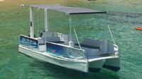 Private Boat Tour around Cabo San Lucas