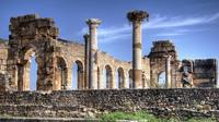Private Day Tour: Meknes and Volubilis from Fez