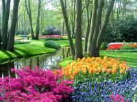 Amsterdam Super Saver 1: Keukenhof Gardens Day Trip and Amsterdam City Tour - Amsterdam, Netherlands