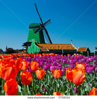 Amsterdam Super Saver: Zaanse Schans Windmills, Volendam and Marken Half-Day Tour plus Keukenhof Gardens Tour - Amsterdam, Netherlands
