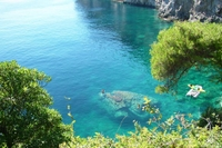 Cruise of the Elafiti and Green Islands from Dubrovnik