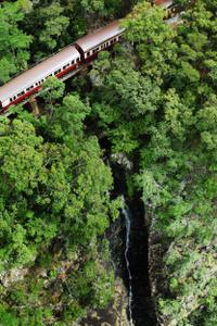 Kuranda Scenic Railway Day Trip from Port Douglas