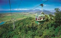 Skyrail Rainforest Cableway Day Trip from Palm Cove, Palm Cove Tours and Sightseeing