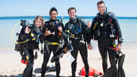 Discover Local Scuba Diving in Perth, Perth Diving & Snorkelling