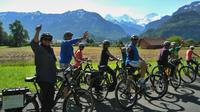 Interlaken 3-Hour Guided E-Bike Tour with a Farm and Ancient Villages Visit