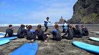 Learn to Surf at Piha Beach from Auckland, Auckland CBD Surfing