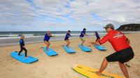 Fingal Head Learn to Surf Day Trip from the Gold Coast or Byron Bay