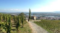 Cotes du Rhone Tour with Wine and Chocolate Tasting