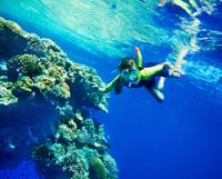 Picture of Snorkel and Kayak Adventure in Antigua