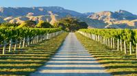 Full-Day Marlborough Wine Tour Including Wine Tasting, Blenheim Wineries & Vineyards