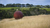 Estate to Plate: Montalto Vineyard Gourmet Lunch and Wine-Tasting Tour image 1