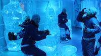IceBar Melbourne Admission, Melbourne City Dessert Bars & Restaurants