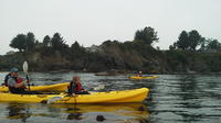 Ocean Kayaking Experience in Brookings