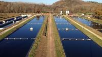 Sturgeon Fish-Farm Visit with Caviar Cooking Class in Neuvic