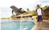 Picture of Nuevo Vallarta Dolphin Trainer for a Day