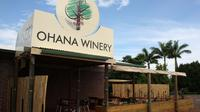 Ohana Winery Exotic Fruit Orchard and Wine Tasting Tour