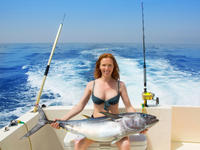 Reef and Wreck or Offshore Fishing Charter Photo