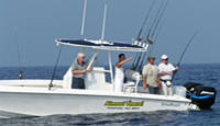 Picture of Reef and Wreck or Offshore Fishing Charter