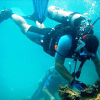 Sir Francis Drake Island Full-Day Scuba Diving Adventure