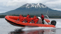 Ride an Ocean Raft Along a Volcanic Coastline to View Wildlife and Spectacular Scenery