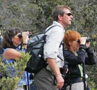 Hawaii Birdwatching Small Group Adventure Tour