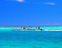 Bora Bora Snorkel, Sharkfeeding and Lagoonarium Full-Day Tour including Picnic Lunch