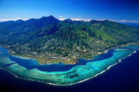 Moorea Circle Island and Belvedere Lookout Morning Half-Day Tour