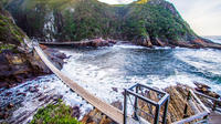 Tsitsikamma National Park Guided Day Tour from Port Elizabeth Private Car Transfers