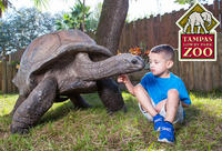 Tampa's Lowry Park Zoo Admission