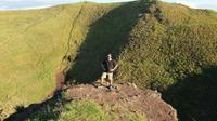Auckland Volcanoes Day Tour