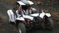 Buggy Tour of Fuerteventura