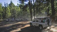 Jeep safari in Tenerife: Teide-Masca Route