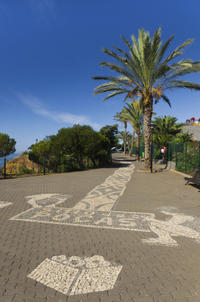 Funchal City Hop-on Hop-off Tour
